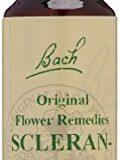 Gall Pharma BachblGte Nr. 28 Original Flower Remedies Scleranthus, 1er Pack (1 x 20 ml)