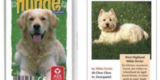 Troll & Toy 006-8919 Quartett - Hunde