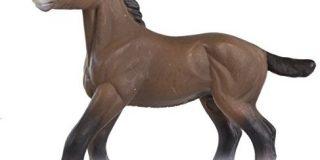 Safari 1514-05 - Hengstfohlen Clydesdale