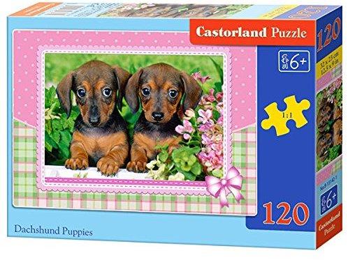 Castorland B-13142-1 - Dachshund Puppies, Puzzle 120 teilig