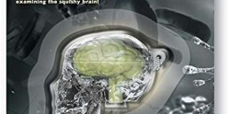 4M 00-03313 - Kidz Labs - Glow Skull, Bunt