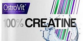 OstroVit 100% Creatine, 1er Pack (1 x 300 g)