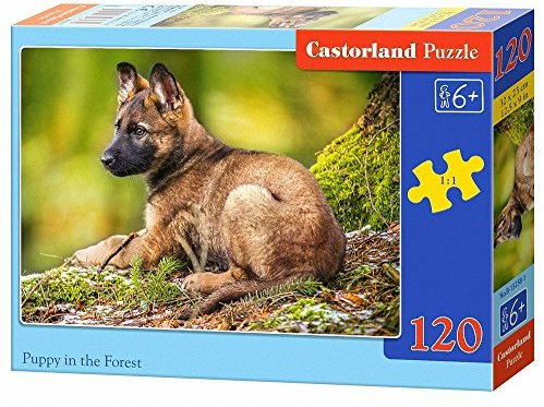 Castorland B-13258-1 - Puzzle Puppy in the Forest, 120 Teile
