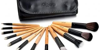 Glow 12 Piece Wooden Handle Professional Makeup Brushes in Black Case
