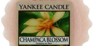 Yankee Candle Wax Melt CHAMPACA BLOSSOM, 22 g