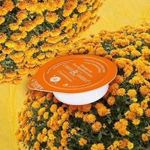 Chiara Ambra reinigende Feuchtigkeits-Schlafmaske Chrysanthemen f&uuml,r die intensive &Uuml,bernacht-Anwendung in Kapsel